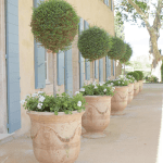 Topiaries Terra Cotta Planters Pots The Glam Pad