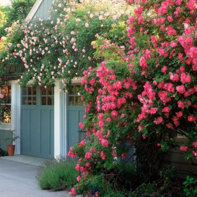 30 Gorgeous Garages You'll Want to Move Into