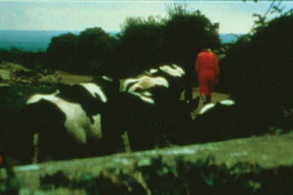 Banewl, 1999, 16mm film; colour anamorphic film, optical sound; 63 minutes