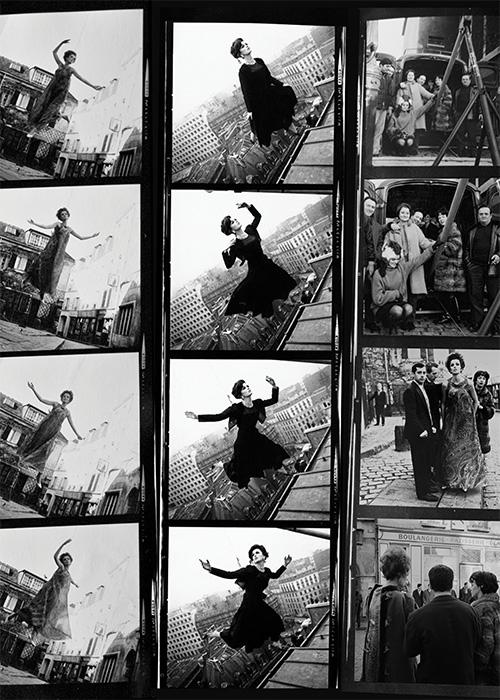 Fly Contact Print, Paris, 1963, Dorothea McGowan