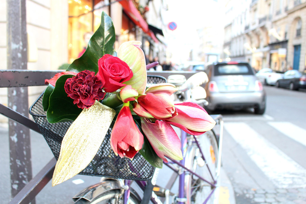 Christmas 2015, flowers closeup, Christmas in Paris, The Glittering Unknown