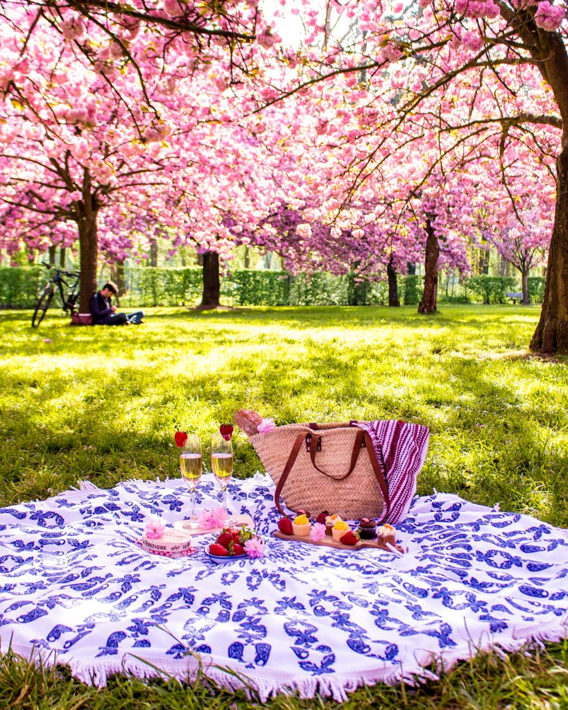 Picnic at Parc de Sceaux- cherry blossom Paris- THE GLITTERINGUNKNOWN