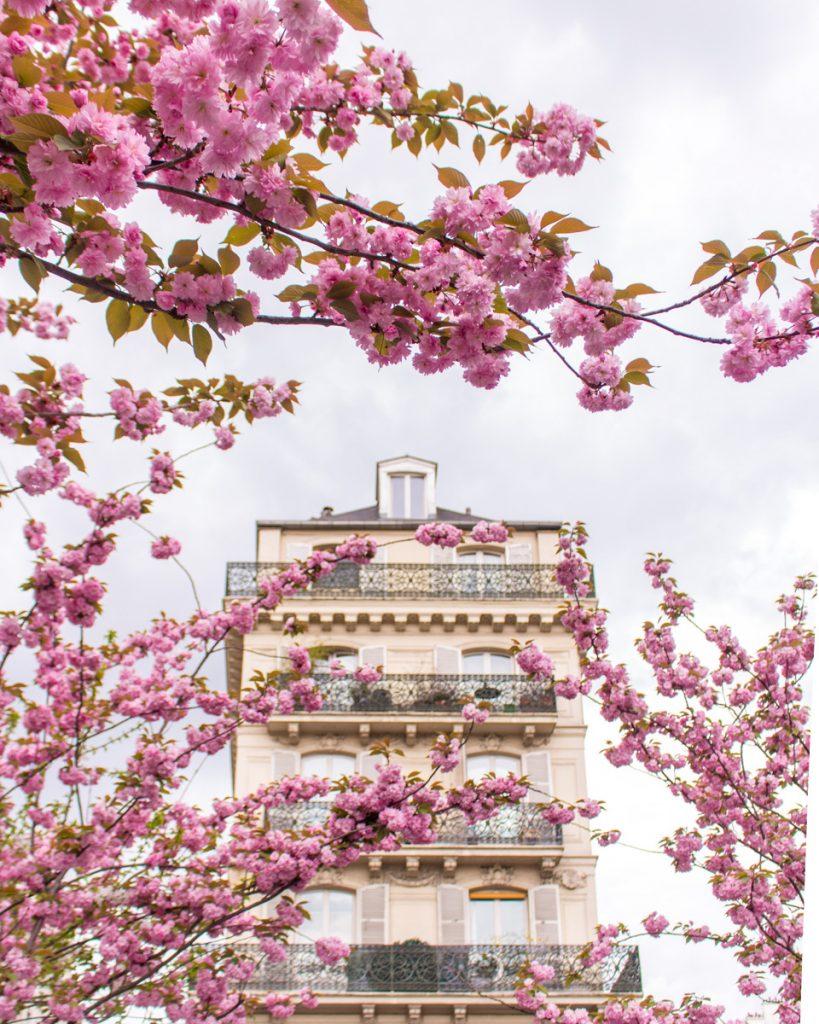 Cherry blossom Paris- Metro Saint Paul- THE GLITTERING UNKNOWN