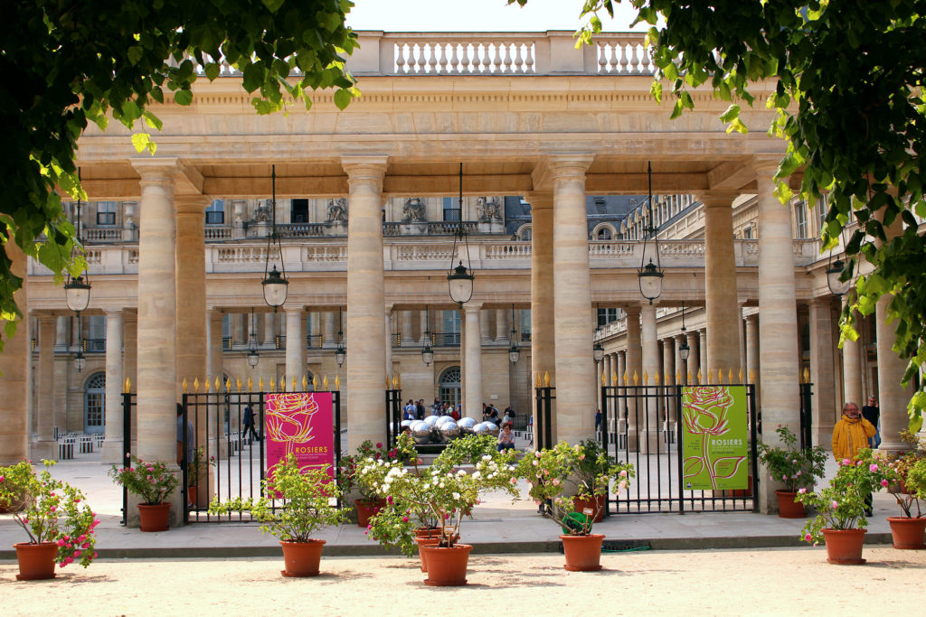 Roses at the Palais Royal, Paris, The Glittering Unknown