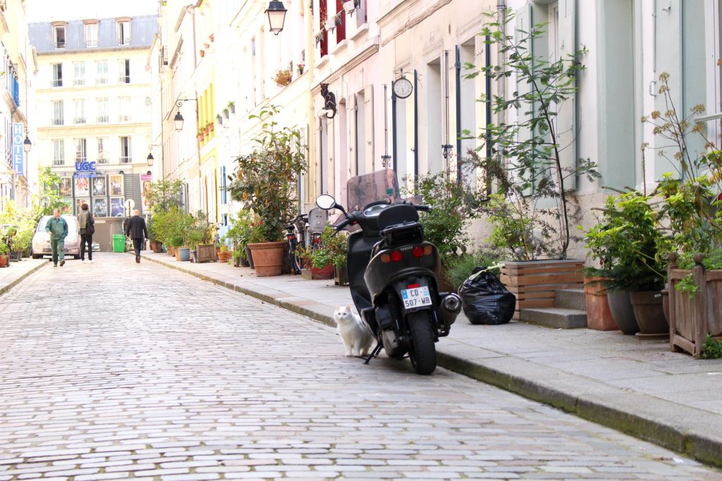 Cat and a motorcycle, Rue Cremieux, Paris, The Glittering Unknown