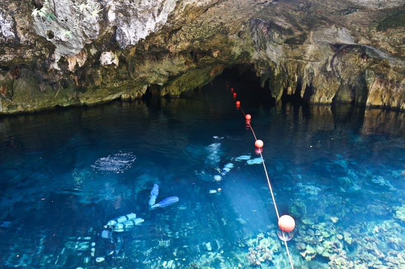 Divers in the Gran Cenote Tulum