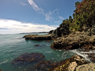 Coromandel coastline at Whangapoua