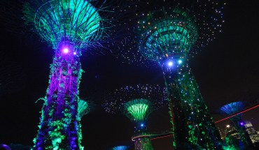 Singapore is a fantastic place for a city break or stopover. The food is delicious and there is so much to do!