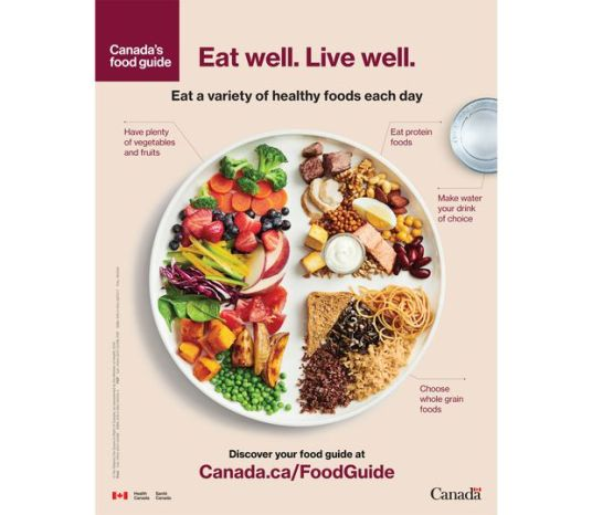 Image result for canada food guide