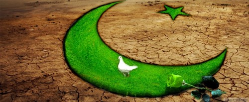 Pakistan's flags wallpapers for facebook covers for 14 august (3)