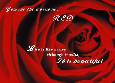 red_result.jpg