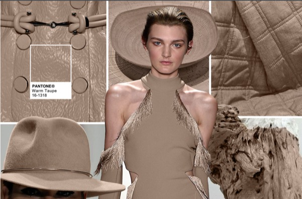 TENDENCIAS DE COLOR OTONO INVIERNO 2016 – 2017  Warm Taupe