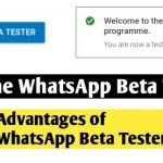 Whatsapp Beta Tester – Whatsapp Tricks – The Gondal