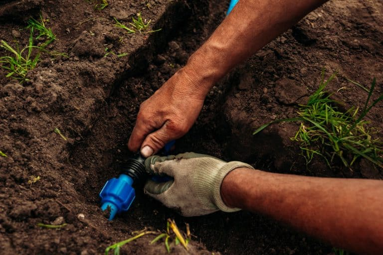 Drip irrigation has become a very popular system because it is the most ecological of all.