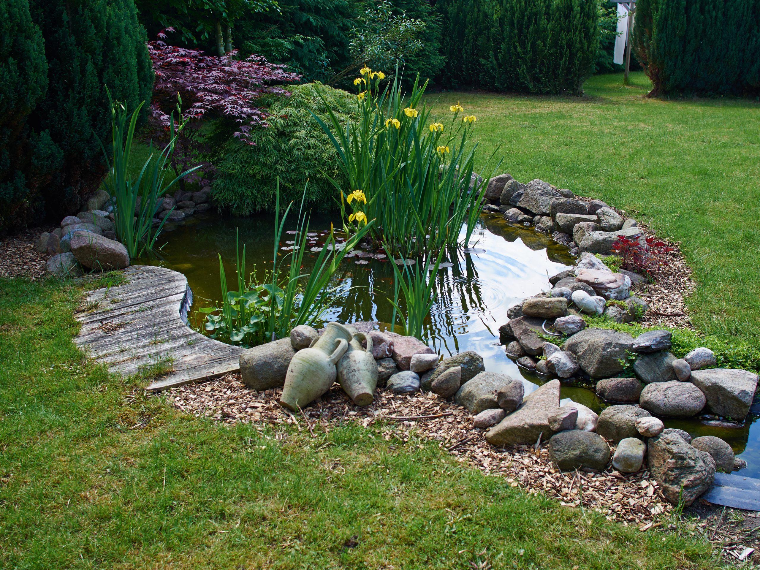 How Build Koi Pond Step Step