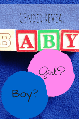 Baby Seeley Gender Reveal