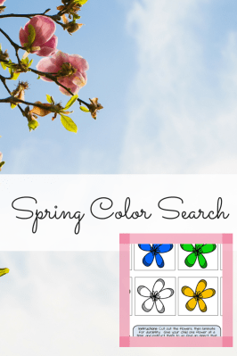 Spring Color Search