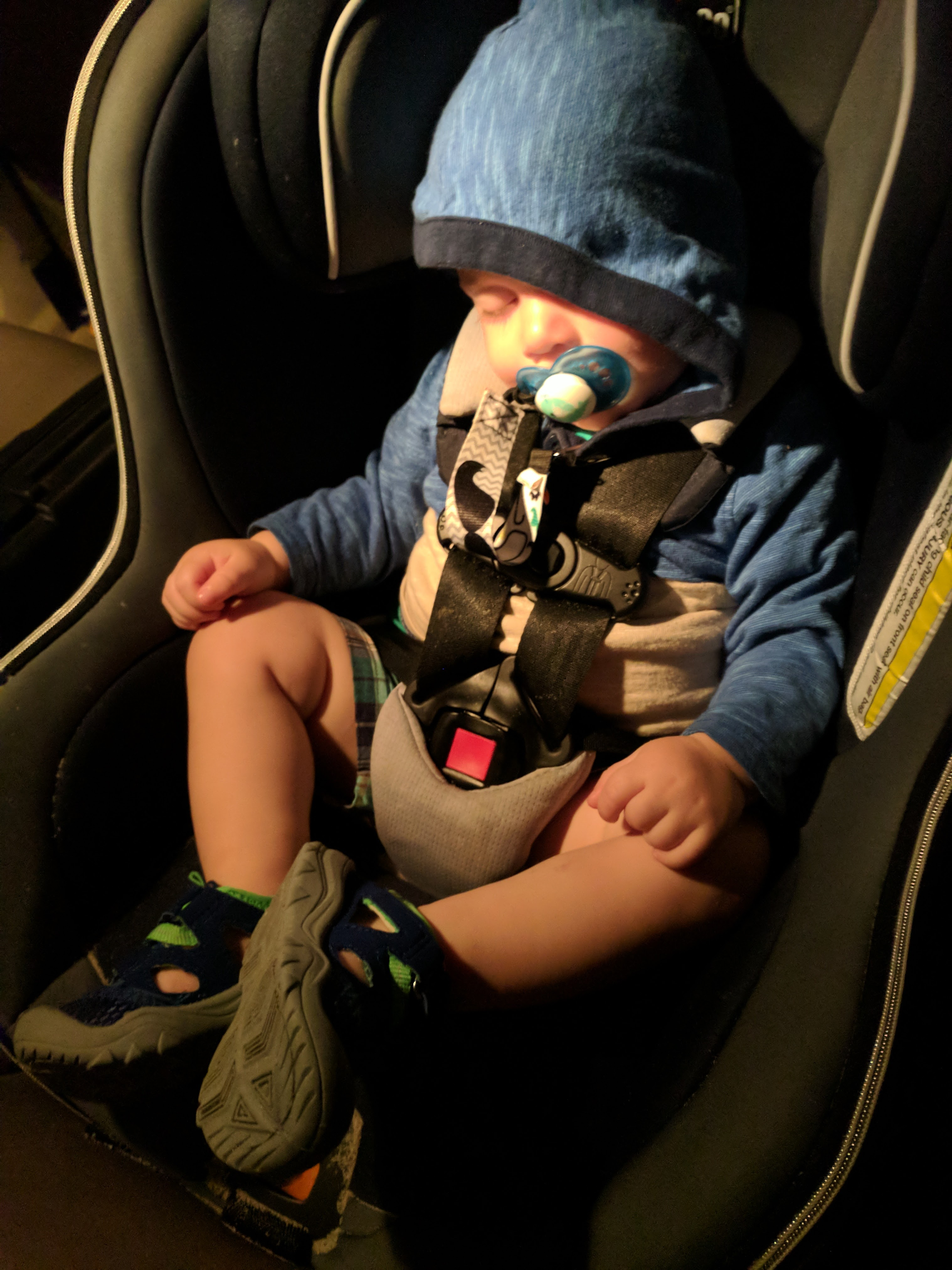 The Grand Seeley Adventure, Family Vacation, worn out