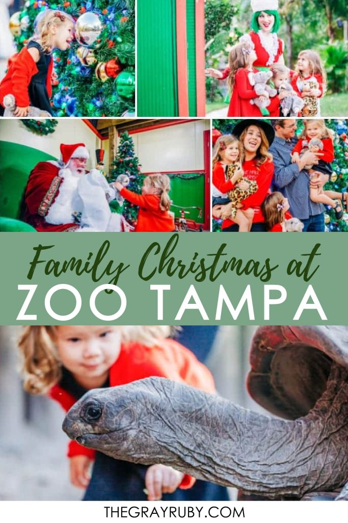 Christmas events in Tampa Florida / Family friendly Christmas events in Tampa Bay / The best Christmas events in Tampa