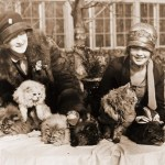 Edna B. Doughty and Louise Grogan with their Persians at a cat show in Washington, DC 1920's