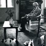 Ezra Pound, cats