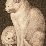 Gottfried Mind, White cat and kitten