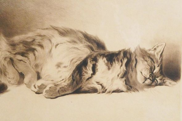 Ferdinand Henri Oger, Cat Sleeping