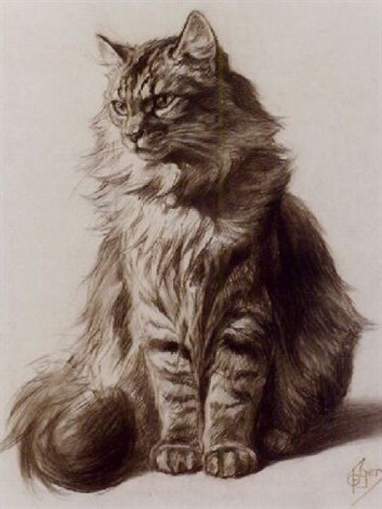Ferdinand Oger (French, 1872-1929) - Study of a Tabby Cat 2