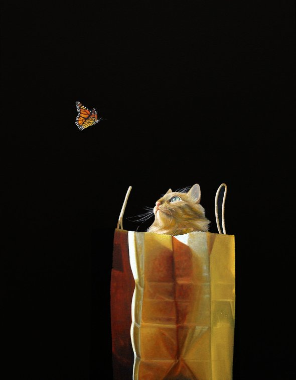 Hide Out, Karen Hollingsworth