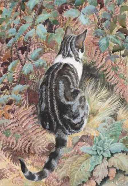 Tabby Cat Amongst Foliage, Charles Frederick Tunnicliffe