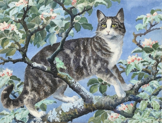 Tabby cat on a branch amongst blossom By Charles FrederickTunnicliffe; pencil and watercolour