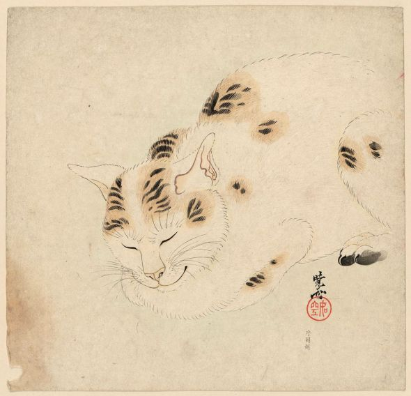 Kawanabe Kyosai, Sleeping Cat