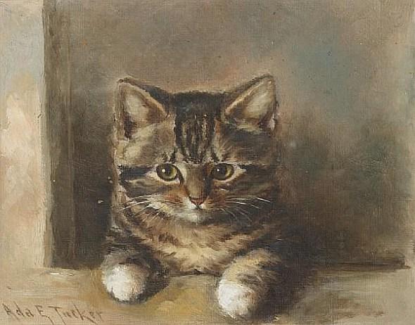 Ada Eliza Tucker, Kitten