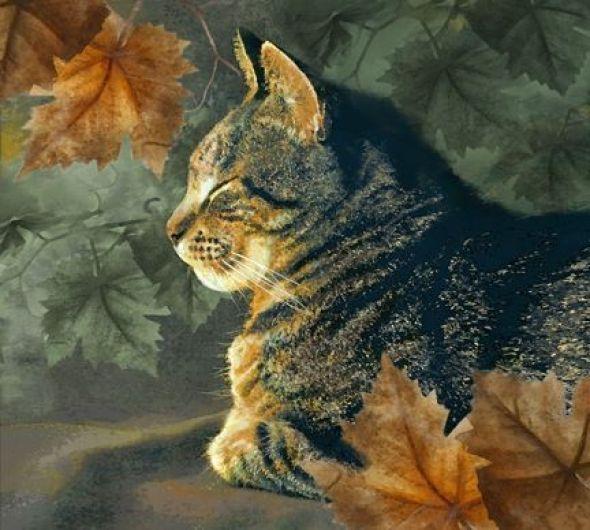 Dianne Woods, Tabby Cat