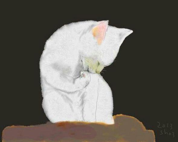 Shozo Ozaki, White Cat