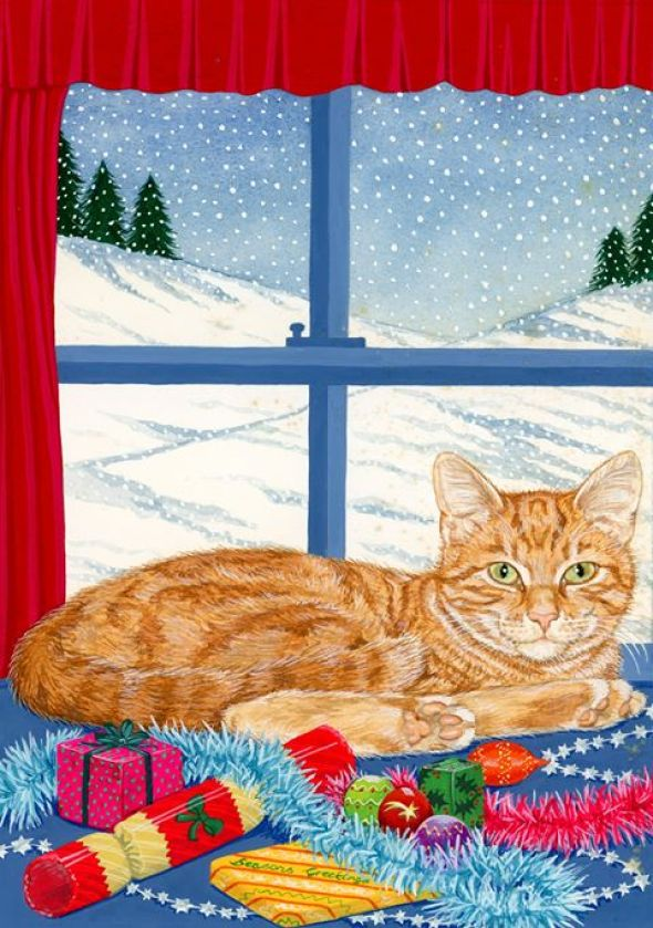 Ginger Cat at the Window, Pamela Blanchfield