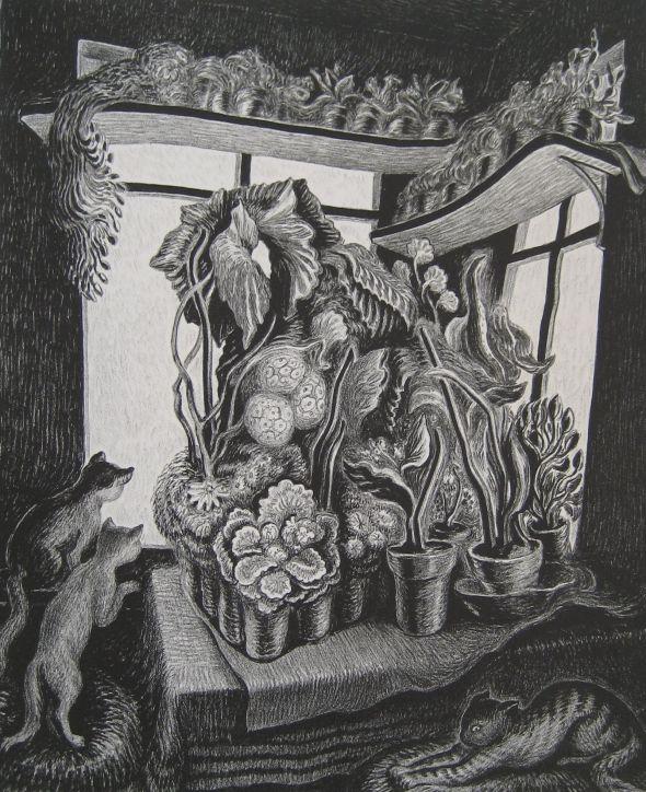 Wanda Gag, Millions of Cats 1