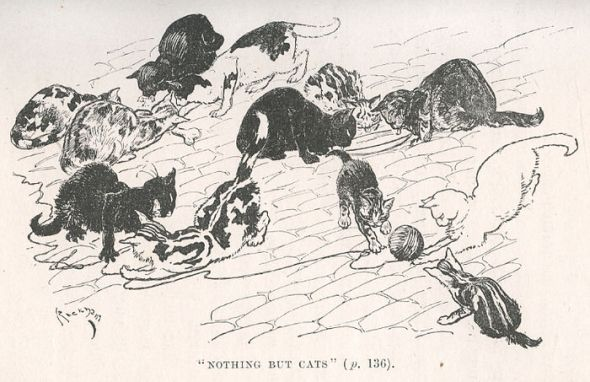 Arthur Rackham, Nothing but Cats illustration