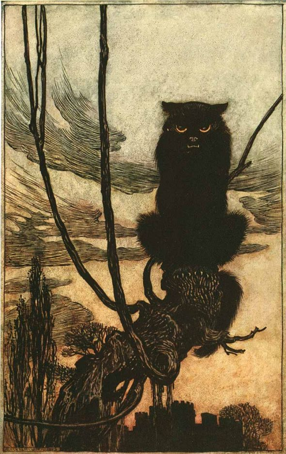 By Day She Made Herself into a Cat 1920 Arthur Rackham