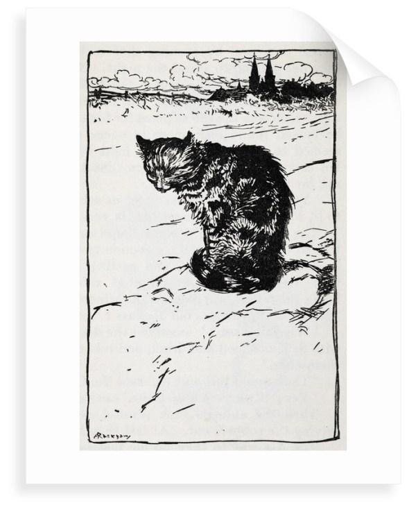 Cat Illustration, Arthur Rackham