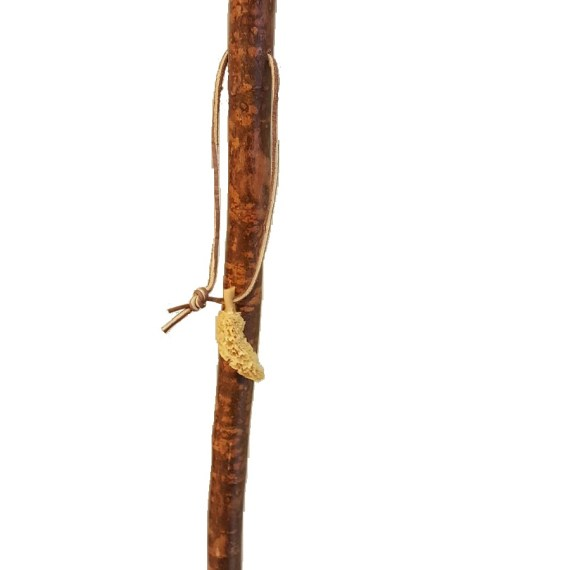 Hiking Stick