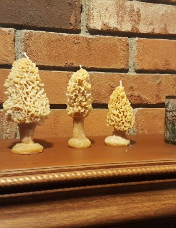 Morel Candle Set