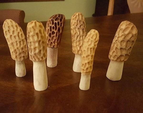 Hand Carved Antler Morels