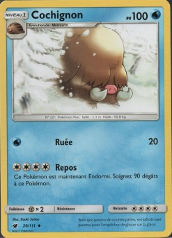 cochignon-invasion-Carmin-SL4-produit-pokemon-pixel-set-base-card-tgc-pokemoncard-pixelart-pixelcraft-pixelbeads-perlerbeads-perlerart-hama-hamabeads-hamasprites-artkal-artkalbeads-fusebeads-retro-gaming-sprite-design-tutoriel
