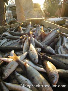 Πάρος, Αλυκή, ψαράδες, Νάουσα