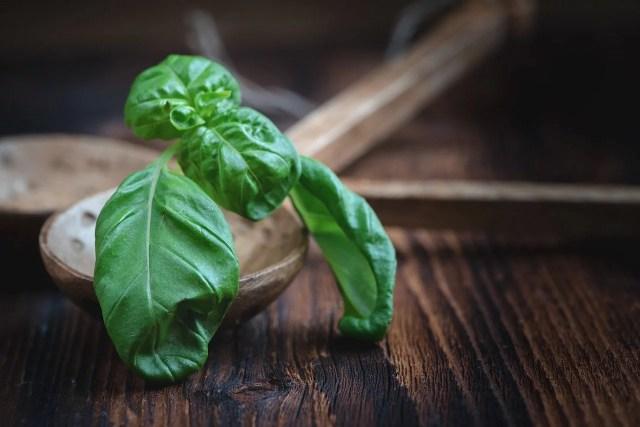 Basil: King of Greek Herbs & Culture