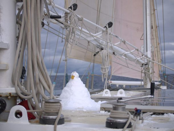 Infinity Expedition - Little snowman, our new steering and watch companion for a few days