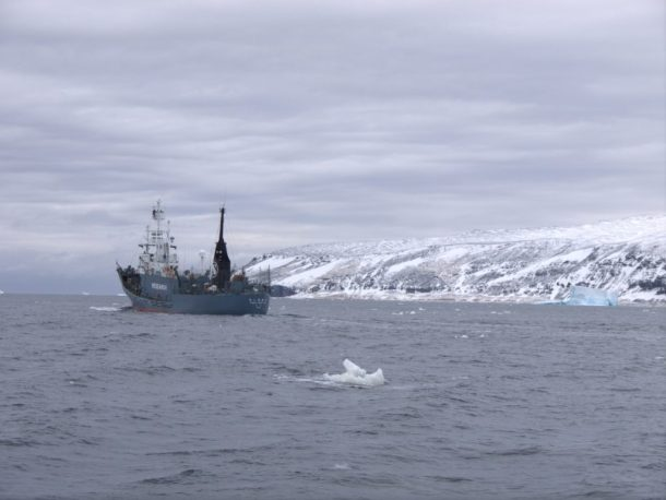 Infinity Expedition, Sea Shepherds - Japanese whalers' so-called ''research'' ship