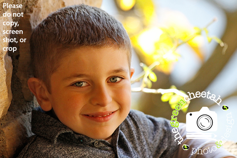 the green cheetah photo&design family session