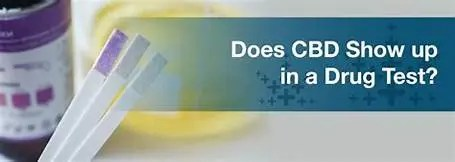 Does CBD show in Drug Test